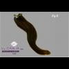 Dahlia Color Dahlia Hair Extension longueur 20 inch ( 50 cm)  #4/6