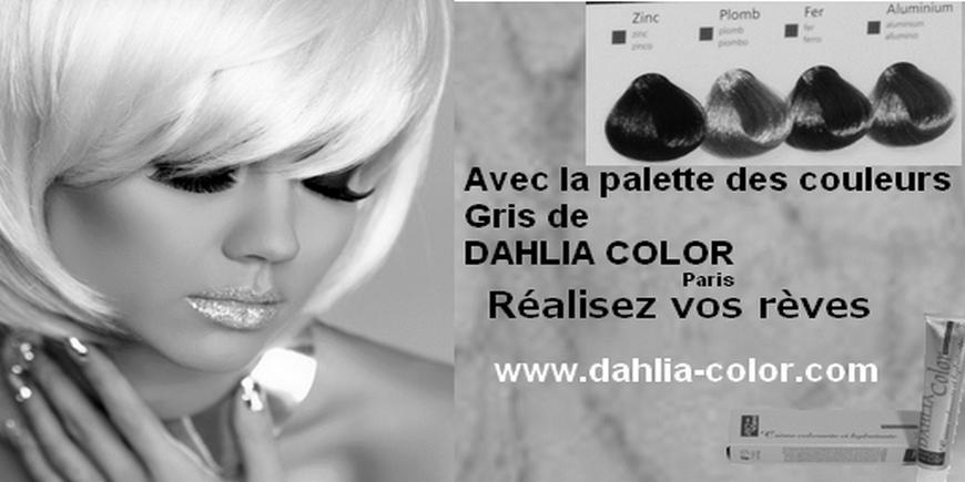 Dahlia Color 2