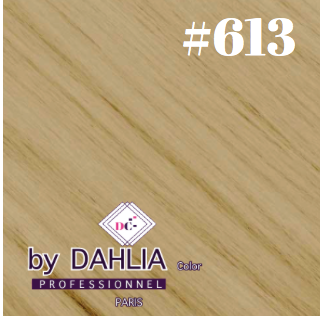 Dahlia Color Dahlia Hair Extension Clip  ( 50 cm) - 613