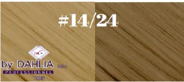 Dahlia Color Dahlia Hair Extension longueur 20 inch ( 50 cm)  #14/24