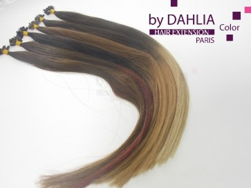 Dahlia Color Dahlia Hair Extension longueur 20 inch ( 50 cm)  #6T27