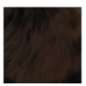 Dahlia Color Dahlia Hair Extension longueur 20 inch ( 50 cm)  #33